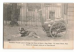 Association Française Pour Le Dressage Des Chiens De Guerre  ATTELAGE Chien  Cuisine Militaire 9 ELD Paris - Guerra 1914-18