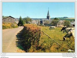 NAFRAITURE ..--  1987 Vers MONTIGNIES - LE - TILLEUL . Voir Verso . - Vresse-sur-Semois