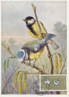 Carte Maximum Card Oiseau Bird Bulgarie Bulgaria 1959 Mesange Bleue Charbonnière Cincia - FDC
