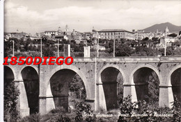 SESSA AURUNCA - PONTE AURUNCO E PANORAMA  F/GRANDE VIAGGIATA  1958 - Caserta
