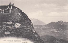 9599) SOMMET Du CHAMOSSAIRE Vue Sur LEYSIN Et Le GRAMMONT - Old !! - VD Vaud
