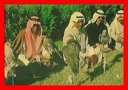 CPSM/gf  DOHA (Quatar)  Falcons Displayed For Sale Immediately Before Hunting Season...F407 - Qatar