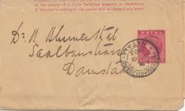 Natal: Pietermaritzburg Wrapper 1903 To Darmstadt/Germany - Ohne Zuordnung