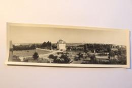 """CARNAC - Photo Originale 9,5 X 29,5 Cm - Villa """"Fleurs D'Ajoncs"""" - Carnac"""