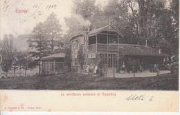 ITALIA - TORINO - Leggi Testo, Animata, Viag.1902 - 2021-04-04 - Unclassified