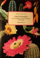 Cactussen En Andere Succulenten In Kleur - Door Edgar En Brian Lamb - 1975 - Non Classés