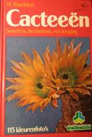 Cacteeën - Soorten, Herkomst, Verzorging - Door W. Barthlott - 1978 - 115 Foto's In Kleur - Cactus Cactussen - Non Classés