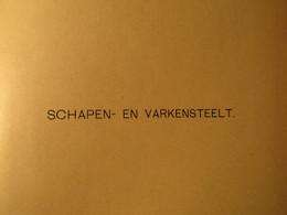 Schapen- En Varkensteelt - Door G. Reinders - 1904 - Dieren Vee Varkens Landbouw Schapenteelt - Non Classés