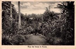 S. SÃO TOMÉ - Roça Santa Tereza - Sao Tome And Principe