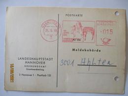 Tiere Zebra Usw. 100 Jahre Zoo Hannover 1965 (11079) - Otros