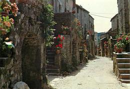 12 - La Couvertoirade - Petit Bourg Fortifié Sur Le Plateau Du Larzac - Une Ruelle Fleurie - Fleurs - CPM - Voir Scans R - Autres Communes