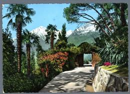 °°° Cartolina - Merano Alto Adige Passeggiata Viaggiata In Busta (l) °°° - Merano