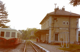 """Gex. Ligne Bellegarde - Divonne-les-Bains. Autorail """"Picasso"""" X 3800. Photo Claude Borderie. 05-1980 - Trenes"""