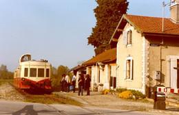 """Grilly. Ligne Bellegarde - Divonne-les-Bains. Autorail """"Picasso"""" X 3800. Photo Claude Borderie. 11-05-1980 - Trenes"""