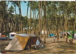 Marina Di Massa Camping Fg Bollo Staccato - Altre Città