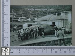 PORTUGAL - CAÇA À BALEIA -  AÇORES -   2 SCANS  - (Nº44803) - Açores