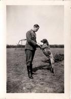 Photo Originale Guerre 1939/45 Officier Allemand Et Son Chien D'arrêt Danois Ancestral Braque Français, Type Pyrénées. - Guerra, Militares