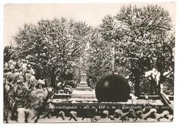 AA1275 Piancastagnaio (Siena) - Giardinetti Sotto La Neve - Panorama Invernale / Viaggiata 1956 - Altre Città