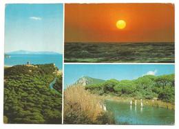 AA1283 Parco Naturale Della Maremma - Torre Di Collelungo - Canale Dello Scoglietto - Panorama Multipla / Viaggiata 1985 - Altre Città