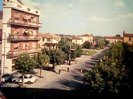 Migliaro (Ferrara): Viale Vittorio Emanuele (animata, Alfa Romeo Giulia, Stazione Carabinieri V1969 IF9403 - Ferrara