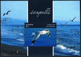 Bloc Sheet Oiseaux Mouettes Birds Seagulls Neuf MNH ** St KItts 2015 - Möwen