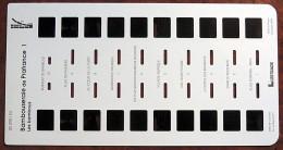 LESTRADE  - 10 Vues Stéréoscopiques - Série Dép - 30290 IEX - Bambouseraie De Prafrance 1 - Stereo-Photographie