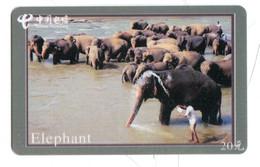 Télécarte China Unicom : Eléphant - Altri
