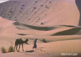 Carte-Postale Maroc Merzouga Dunes De Sable - Agadir