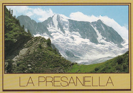 (QU467) - CIMA PRESANELLA (Trento) - Trento