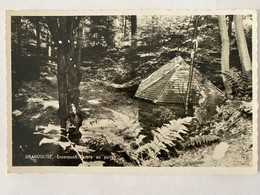 CP. 59 Grandglise - Erconpuch (arbre Au Puits) - Beloeil