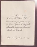 ADEL NOBLESSE = FILS DE BARON KERVYN De VOLKAERSBEKE - STEPHAN KERVYN De VOLKAERSBEKE MET MARCELLA DE BEHAULT   CHATEAU - Wedding