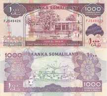 SOMALIA SOMALILAND 1000 Shillings 2014 P 20 C UNC - Somalia