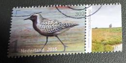 Nederland - NVPH - 3406 - 2016 - Gebruikt - Cancelled - Zilverplevier - Met Tab - Used Stamps