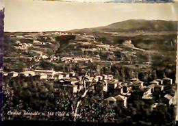 CAMPO TASSULLO VAL DI NON SCORCIO   V1960 IF9476 - Trento