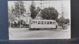 Photo De Format CP - Toulon - Tramway - Motrice Brill, Série 100 Vestibulée - Reproductions