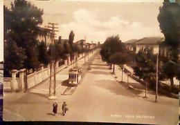 PARMA -VIALE SOLFERINO TRAM ANIMATA  V1950 IF9488 - Parma