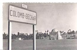 COLOMB-BECHAR   CPSM PF - Bechar (Colomb Béchar)