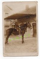 CARTE PHOTO - MILITARIA - 24 - THIVIERS - MILITAIRE DU 27 ARTILLERIE SUR UN CHEVAL DEVANT LA MARECHALERIE LABROUSSE - Thiviers