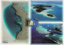Wallis Et Futuna  - Postcard  Used  2008 - Wallis - Collage Of Images   - 2/scans - Wallis And Futuna