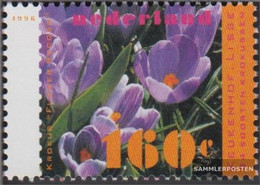 Netherlands 1569 (complete Issue) Unmounted Mint / Never Hinged 1996 Spring Flowers - Unused Stamps