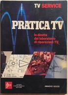 Pratica TV Di Amadio Gozzi, 1982, Jacopo Castelfranchi Editore - Other