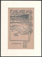 Cca 1900 Szent Perpetua, Fametszet, Paszpartuban, 24×15 Cm - Sin Clasificación