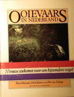 Ooievaars In Nederland - Door P. Hayman, D. Jonkers En P. Van Zalinge - Vogels - Other