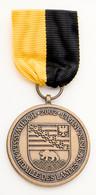 """Orden & Ehrenzeichen: Sachsen-Anhalt 2002: """"Hochwassermedaille"""" Mit Miniatur, Nadel Und Verleihungsu - Non Classés"""