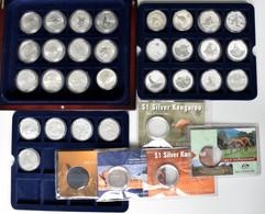 Australien: Elizabeth II. 1952-,: 1 Dollar 1993 - 2021, Komplette Silber Känguru / Kangaroo (RAM). 2 - Unclassified