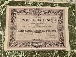Sté  FONCIÈRE  De  TUNISIE  ------------  Part  Bénéficiaire - Bank & Insurance