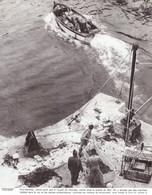 1976 - Héliogravure - Plogoff (Finistère) - Le Port De Bestrée - PREVOIR FRAIS DE PORT - Non Classés