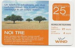 Ricarica WIND NOI TRE, Taglio 25,00 Euro, Scadenza 30-06-2007, PUBLICENTER, Usata - [2] Sim Cards, Prepaid & Refills