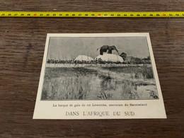 1906 PATI Barque De Gala Du Roi Lewanika Baratseland - Non Classés