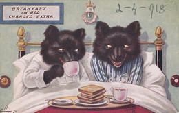 POSTCARD - BREAKFAST IN BED CHARGED EXTRA - WOLF - Other